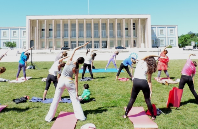Yoga and stree-free Exams 2014