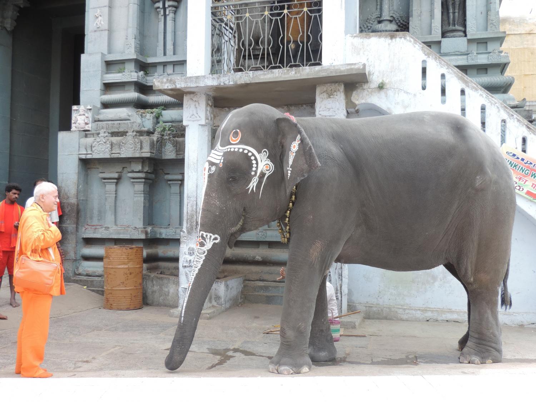 7ª Sapta Puri – Kanchipuram